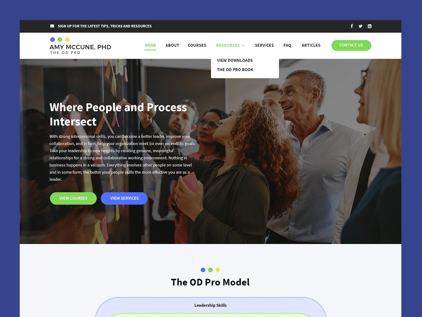 theodpro-portfolio1350x1014