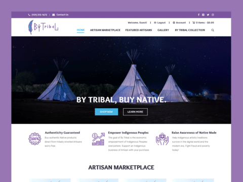 bytribal-web-design-featured