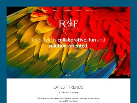 Service Company Web Design – French Color (Thumbnail Design)